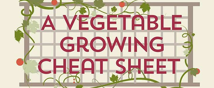 The Ultimate Vegetable Gardening Guide in Handy Infographic Form
