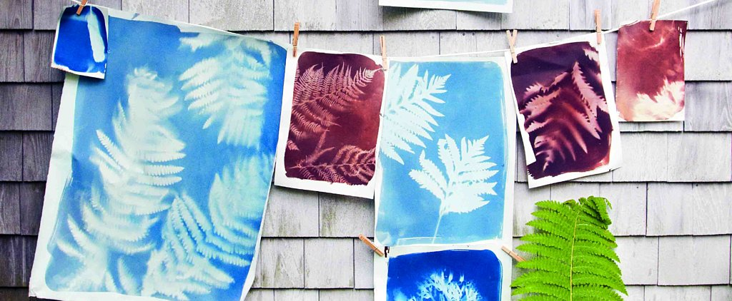 Summer Makes an Imprint All Year Long With These Nature Sunprints