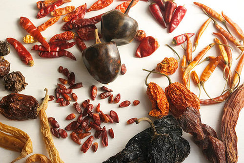 The Best Dried Chillies