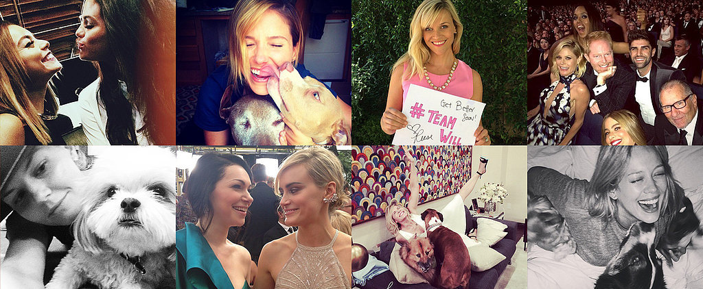 National Dog Day and Cute Costars Take Over This Week's Cutest Celebrity Candids