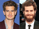 It's Time to Study Andrew Garfield's Bushy Lumberjack Beard (PHOTOS)