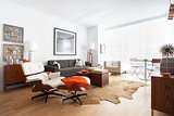 Houzz Tour: Details Make the Difference in 700 Square Feet (8 photos)