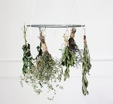 DIY: Easy Herb Drying Rack for the Kitchen