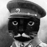We Interview Stalin the Cat, the Latest Supreme Feline Dictator