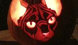 15 Animal Jack-o'-Lanterns