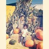 Tia Mowry-Hardrict's Lil' Pumpkin