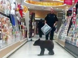 Bear Cub Found Wandering Oregon Drug Store Goes to Rehab
