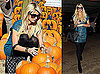 Photos of Paris Hilton at the Pumpkin Patch and Shopping in LA
