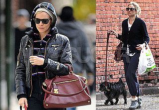Photos of Sienna Miller Walking Her Dog in NYC After A Rumored Reconnection With Jude Law