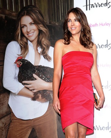 Elizabeth Hurley Launches Organic Food Line for Harrods