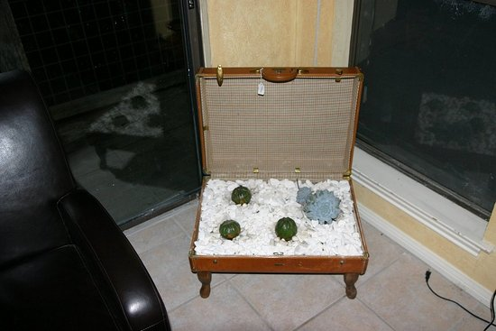 Turn a suitcase into a planter.