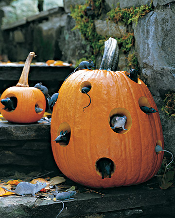 Turn any old pumpkin into a creepy, critter-filled mouse motel.