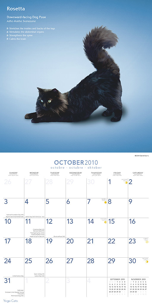 October — Downward-Facing Dog Pose