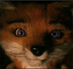 Exclusive Clip of The Fantastic Mr. Fox Movie
