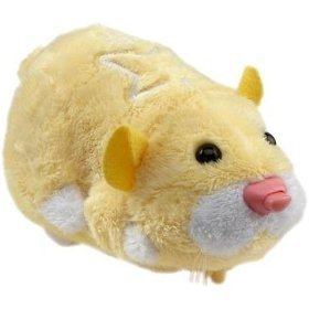 Shelling Out Big Bucks for Zhu Zhu Pets?
