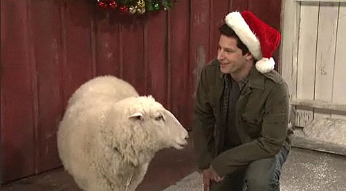 "Video of Andy Samberg in ""Mark Wahlberg Talks to Christmas Animals"" on Saturday Night Live"