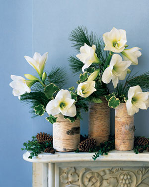 Wrap lengths of birchbark around vases for a beautiful, Winter effect.  Source