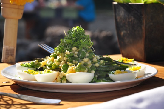 Greenish Salad With Soft Boiled Eggs
