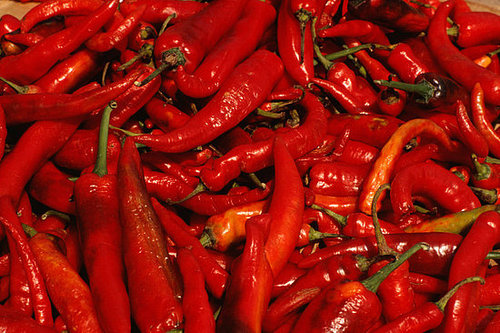 Yummy Links: From Chile Peppers to Tyler Florence