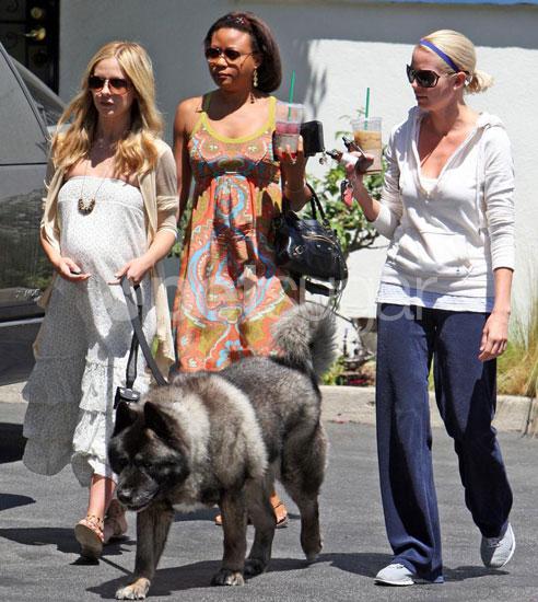 Sarah Michelle Gellar, Tyson, and Pals Take a Walk