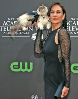 Stacy Brings &quot;Kitty&quot; As Her Red Carpet Date To the 2009 Daytime Emmys