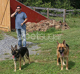 Jon Gosselin's Last Day With Shooka and Nala