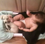 Naptime Foiled, Baby Plays Footsie With Puppy's Face