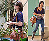 Photos of Twilight Star Ashley Greene in LA
