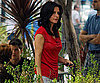 Photo Slide of Courteney Cox Filming Cougar Town