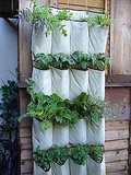 Lacking space? Instructables proposes a vertical garden.