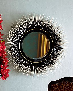 Love It or Hate It? Porcupine Quill Mirror