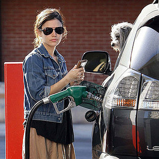 Pups at the Pump
