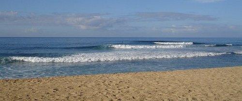 Saturday, March 1, 2008: Makaha Beach, Ehukai Beach Park