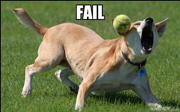 Doggers Misses Ball: Fail