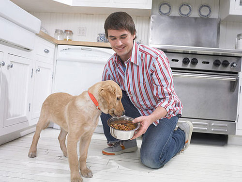 New Year's Petsolution: Portion Control