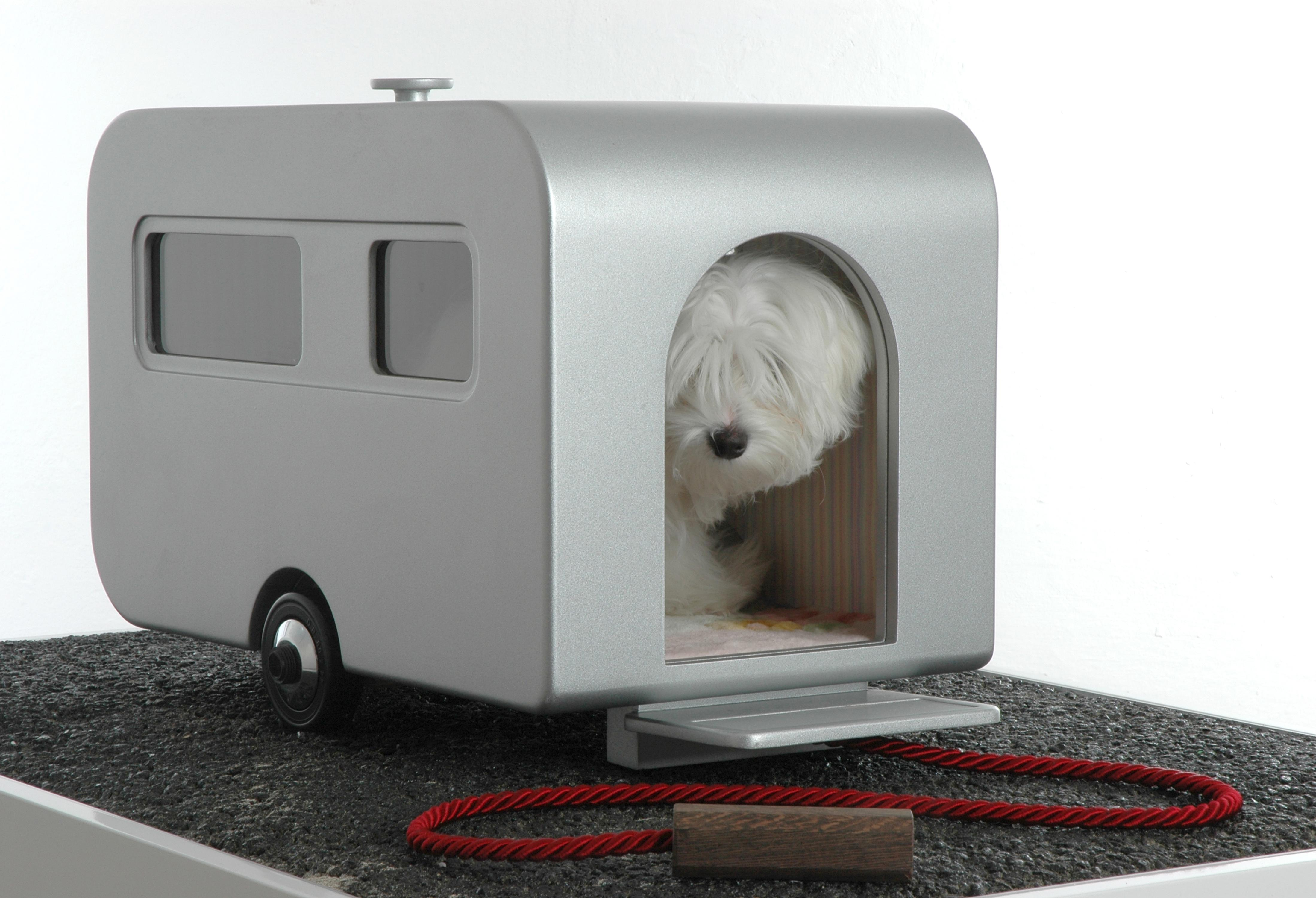 dwp dog caravan 030108