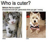 Cute... and Cuter!