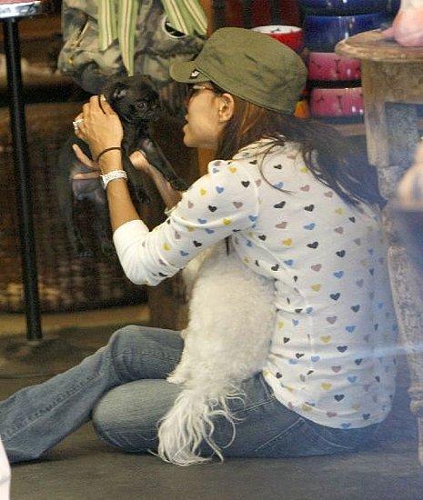 Eva Longoria Adopts a Pug Puppy