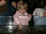 Playing at the aquarium.