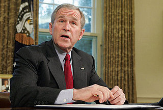 Check This: Not-So-Light Commentary on Bush's Interpretation of Executive Power