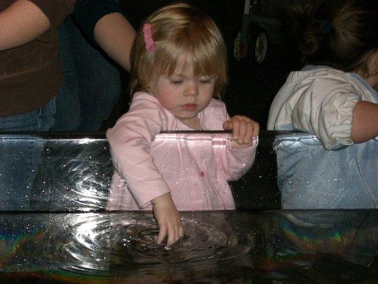The Aquarium and Ivars!