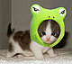 Fab_Kitty