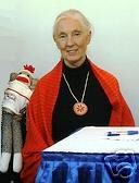 Jane Goodall Autographed Sock Monkey Auctioned for Education Fund