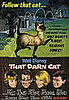 Cat Movie Titles: Real or Fake?
