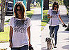 Photos of Rachel Bilson Walking Her Dog Thurman Murman in LA