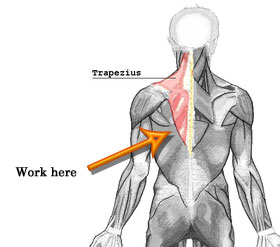 Back to Basics: Keeping Your Shoulders Down