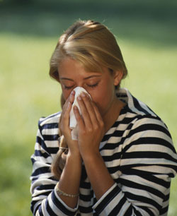 Ragweed Allergies Are Upon Us