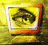 Bugging Out: How to Deal With Computer Eye Strain