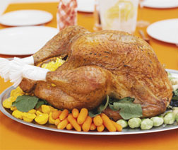 Turkey: White vs. Dark Meat vs. Tofurky