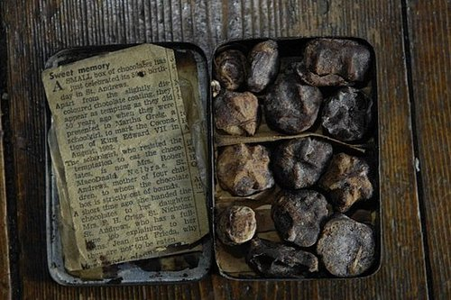 Is This the World's Oldest Chocolate?